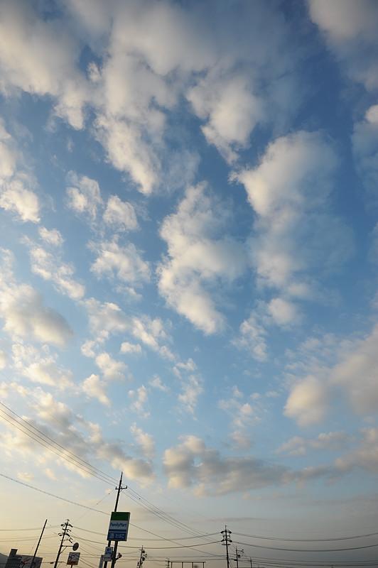 積雲の群れる空: 空と雲のフォト...