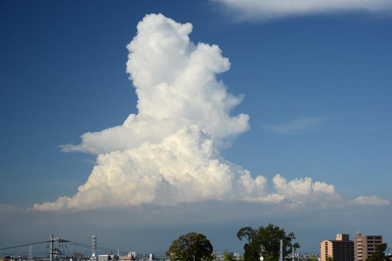 「積乱雲」の画像検索結果